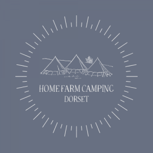home farm camping dorset glamping campsite